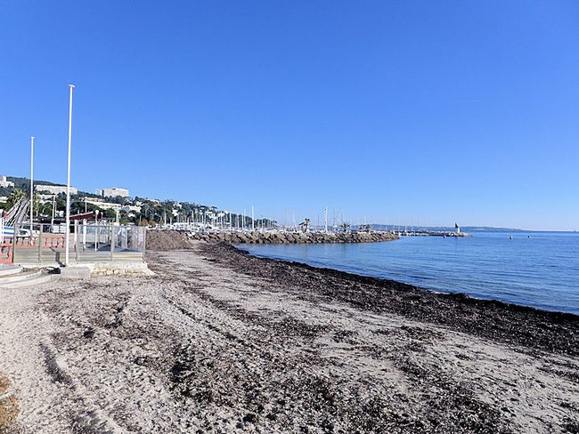 Les Terrasses du Palm Beach, Cannes - 5